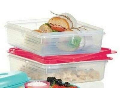 Tupperware Snack Stor Container
