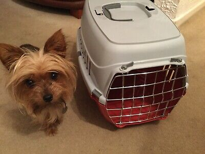 Pets At Home Small Pet Carrier (dog Not Included 😁)