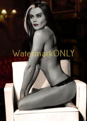 """Yvonne De Carlo """"The Munsters"""" """"LEGGY"""" """"Lily"""" 60s TV Show """"Pin Up"""" PHOTO! #(0)"""