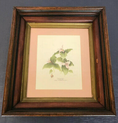 Antique Victorian Eastlake Shadow Box Picture Frame 3 Tier 18 x 14