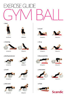 Exercise Gym Ball Guide Workout Poster | A4 A3 & A3+ Sizes Laminated | HD Print