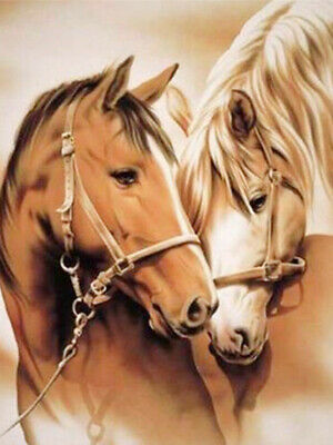 5D Full Diamond Painting DIY Horse Couple Lover Embroidery Kits Geschenk