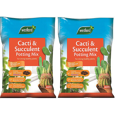 Westland Cacti Succulent Plant Potting Compost Mix Enriched Seramis Pack of 2