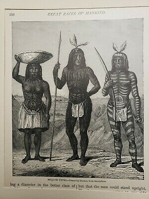 antique tattoo1800s tattooed man mojave indian etching litho book ex libris 8x10