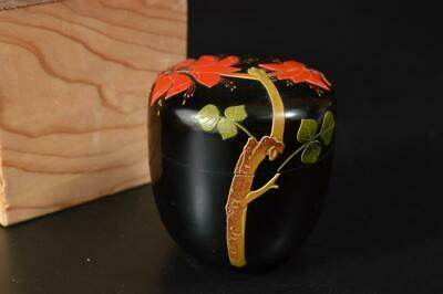 U1207: Japanese Wooden Lacquer ware Ryukyu coating TEA CADDY Container w/box