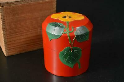 U1198: Japanese Wooden Lacquer ware Ryukyu coating TEA CADDY Container w/box