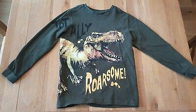 Boys green longsleeve dinosaur top age 7 from next.totally roarsome