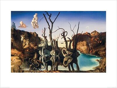 Salvador Dali Print Swans Reflecting Elephants 80x60cm