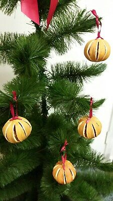 Natural Dried Oranges Christmas Tree Decorations tied with red ribbon