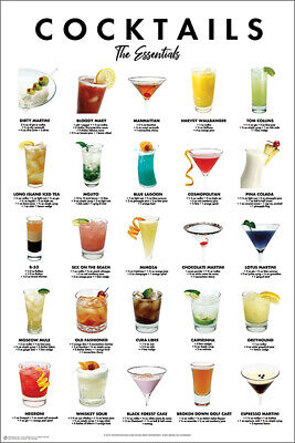 CELEBRATE DIVERSITY ALCOHOLIC BOTTLES POSTER 12x18 FUNNY WITTY PP033