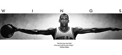 72x23 Michael Jordan Wings Door Sports Poster Print
