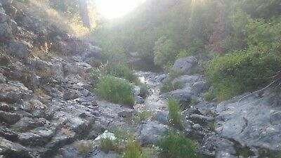 KP Placer_40 Acre California Mother Lode Placer Mining Claim