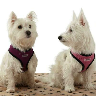 Pet Harness Dog Puppy Soft Comfortable Breathable Mesh Fabric Adjustable S/M/L/X