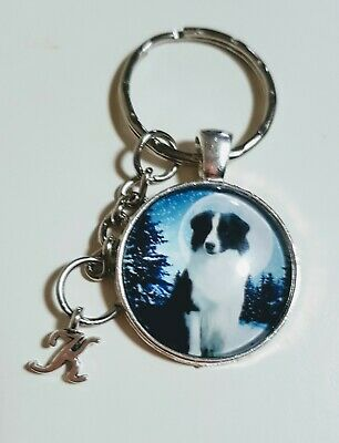 Personalised Border Collie The Moon Keyring Christmas Birthday Gift Mum Dad Nan