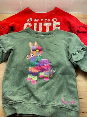 Girls Clothes Age 4 Years Next Sweaters Sweatshirts Tops X2 (67