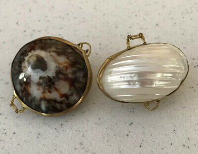 Polished White Mother of Pearl & Dainty Sea Shell Brass Hinged Trinket Pill Box