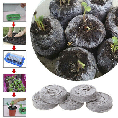 50pcs 25mm Jiffy Peat Pellets and Coco Pellets Seed Starting Plugs Seeds TPI