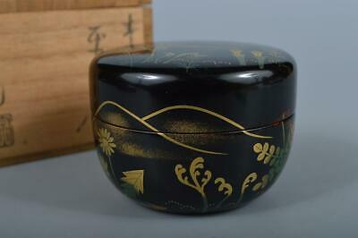 K3588: Japanese Wooden Lacquer ware TEA CADDY Natsume Jujube w/signed box