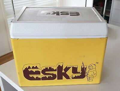 Vintage Retro Esky. 1980's.  Metal Very Good Condition.