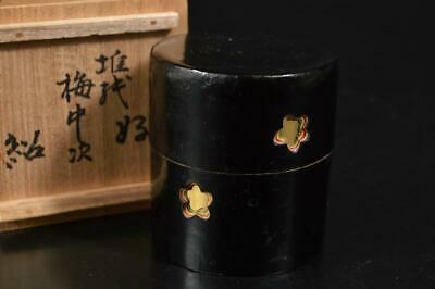 A3389: Japanese XF Dry lacquer Flower sculpture TEA CADDY with a certificate