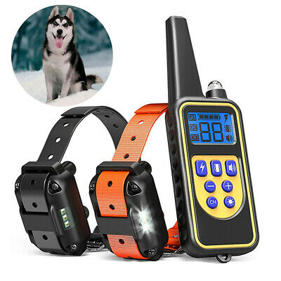 Waterproof 2 Dogs Training Electric Collar Rechargeable Remote Control 875 Yards
