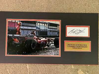 7 X FORMULA ONE CHAMPION Personally Signed 22x12 - MICHAEL SCHUMACHER