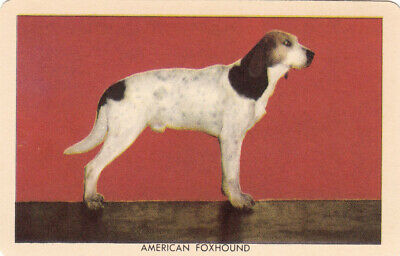 1 Swap Playing Collector Litho Challenge Of The Yukon Dog Card American Foxhound