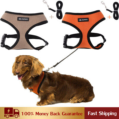 Mesh Padded Soft Puppy Pet Dog Harness with Leash Breathable Comfortable Durable