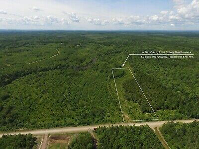 4 ACRE COUNTRYSIDE PROPERTY - Port Elgin, New Brunswick - CANADA