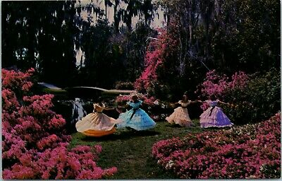 Postcard Florida Cypress Gardens Southern Belles Dresses Happy Times Colorful