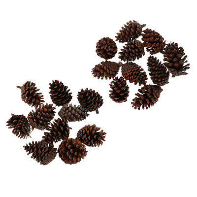 20Pcs Large Natural Dried Pine Cones Crafts For Home Wedding Party Decor