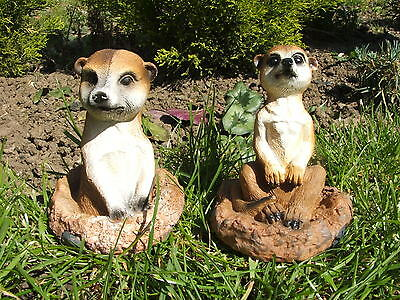 Latex Mould Moulds Mold.     Pair Of Meerkats In Burrow