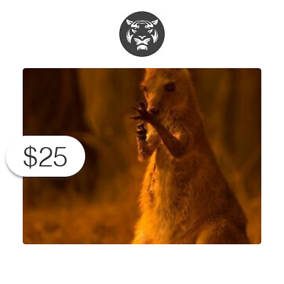 $25 Charitable Donation For: Australia Wildfire Fund