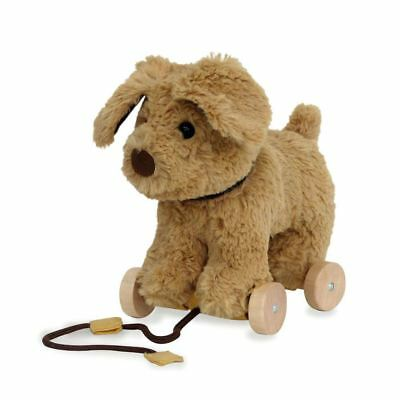 Little Bird Told Me PERCY PUP PULL ALONG Push Pull Along Toy - BN