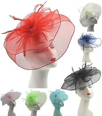 Elegant Women's Headband and Clip Fascinator Wedding Races Royal Ascot Occasion