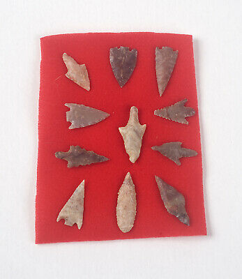 Set of 11 Neolithic Stone Age African Arrowhead Artifacts - From 4,000-10,000 BC