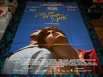 Call Me By Your Name - Original Large French Folded Poster - Chalamet/Hammer