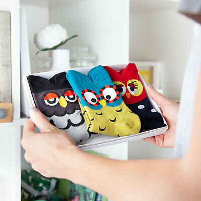 Hayley & Co - Owl Sock Box
