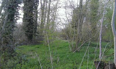 Land for Sale, 0.85 acres of Woodland. Norfolk