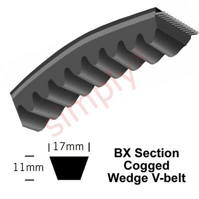 BX31 Major Brand BX-Section Cogged V-Belt