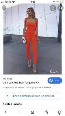 Dion Lee Pant And Top Set