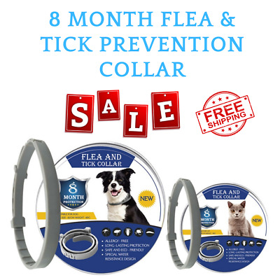 Bayer Seresto Flea and Tick Collar for Small Dog,Up to 8 Month Protection