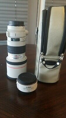Canon EF 300mm f/4 L USM Lens + 1.4x teleconvertor and case