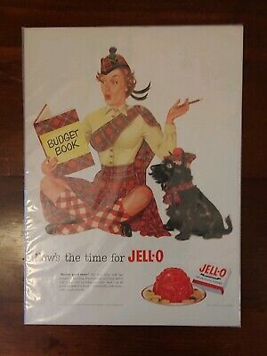 Vintage 1952 JELLO Ad - Woman Looking At Budget Book With Cute Scottie Dog