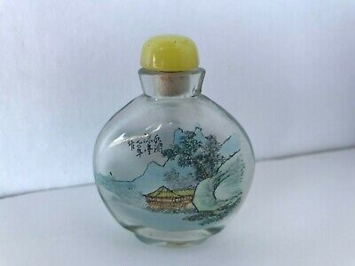 Antique Peking Glass Chinese Reverse Painted Snuff Bottle Signed