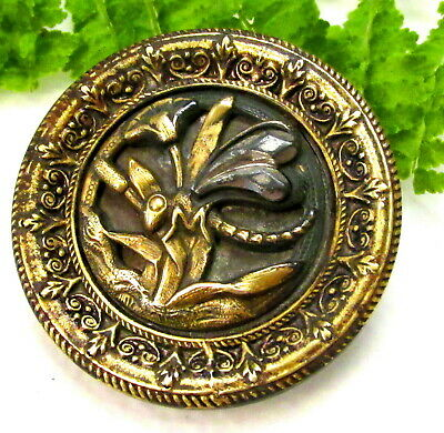 Wonderful Large Victorian Metal Escutcheon Button W/ Cut Steel Wasp Insect C71