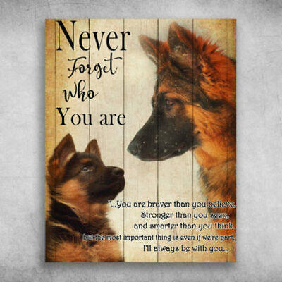 Old German Shepherd Dog Never Forget Who You Are Poster No Frame Mothers Day