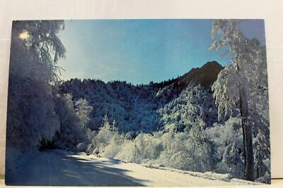 Great Smoky Mountains National Park Snowy Trail US 441 Postcard Old Vintage Card