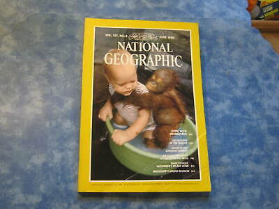 NATIONAL GEOGRAPHIC June 1980 LIVING WITH ORANGUTANS The Shroud CHINCOTEAGUE