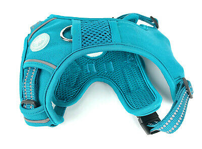 Dog Harness Soft Mesh Comfort Vest Adjustable Turquoise Color Size Small